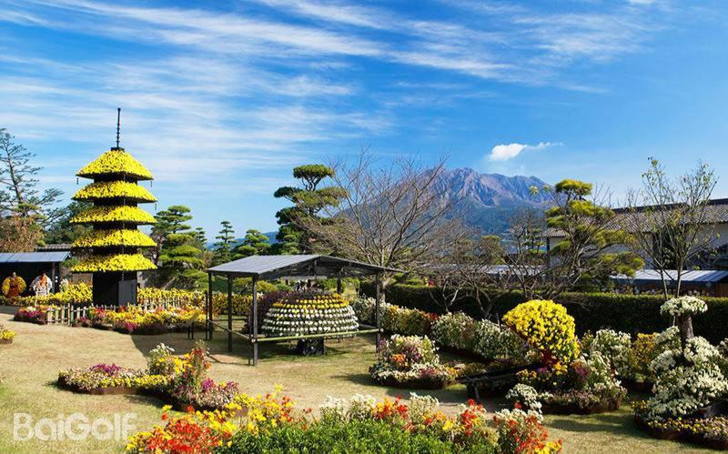 Kagoshima Kyushu 4N 3R (4-Star Hotel+Hot Spring)